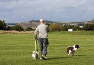 man walking 2 dogs