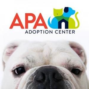 APA of MO adoption center