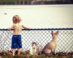 Dogs benefits kids